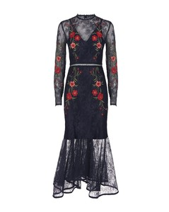 Dreamscape Embroidered Lace Dress